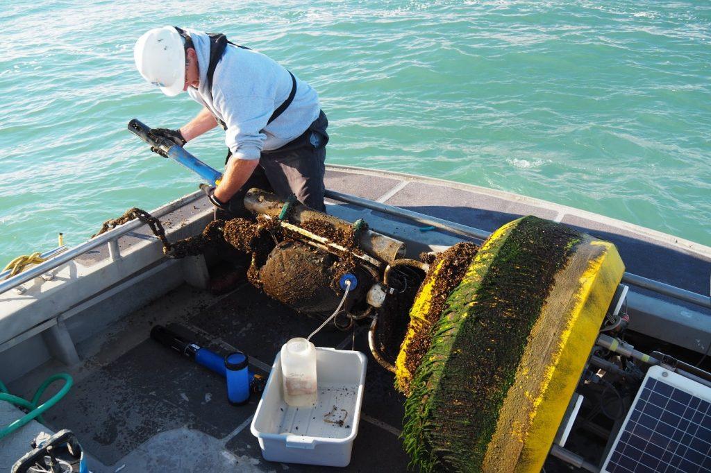 buoys ciglr lake erie