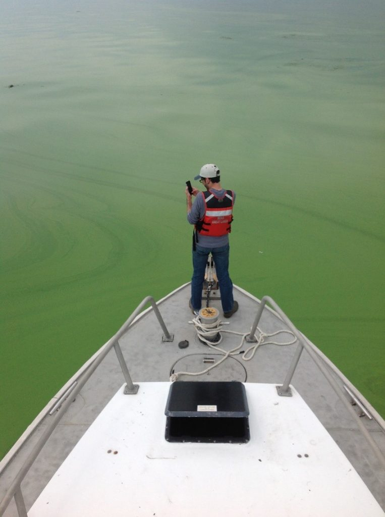 ciglr glerl harmful algal blooms erie