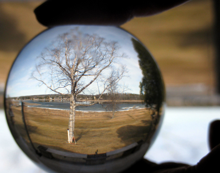 Adaptive management is almost like having a crystal ball. Credit: Kate Ter Haar.