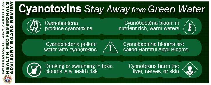 cyanotoxins infographic hpab