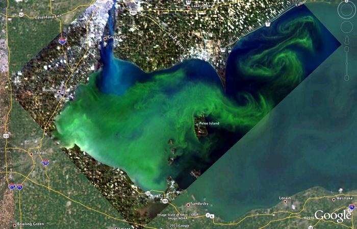 photo lake erie algae satellite