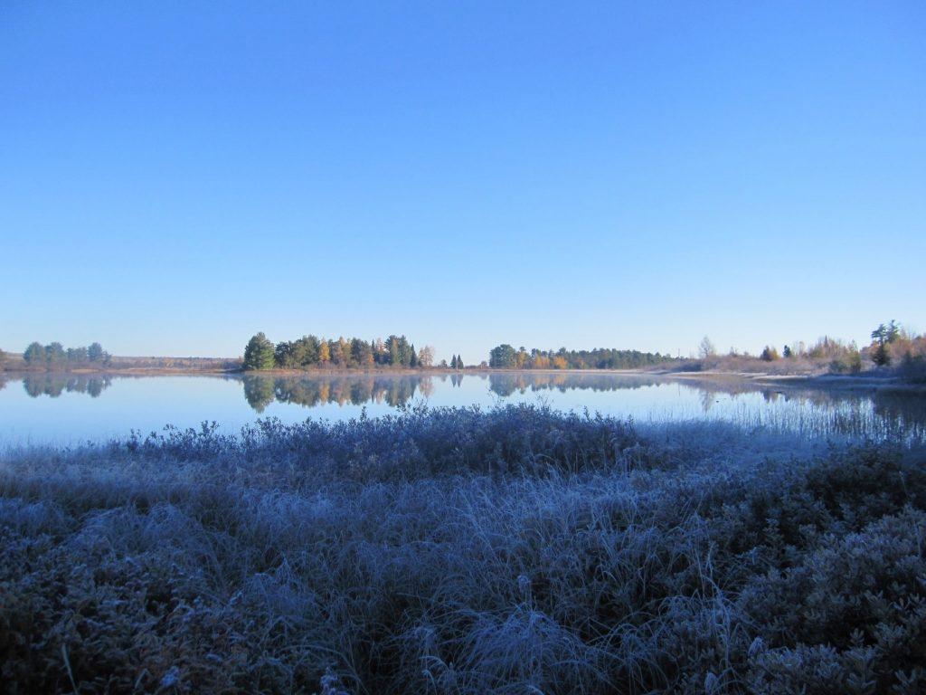Une zone humide du lac Supérieur. Photo : USFWS Midwest