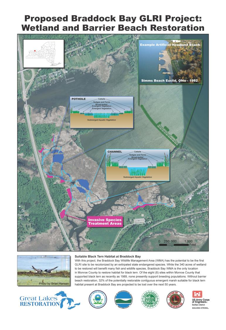 A poster explaining the Braddock Bay project. Credit: USACE