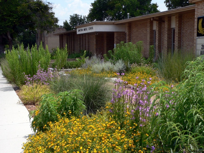 An example of a rain garden. Credit: EPA.