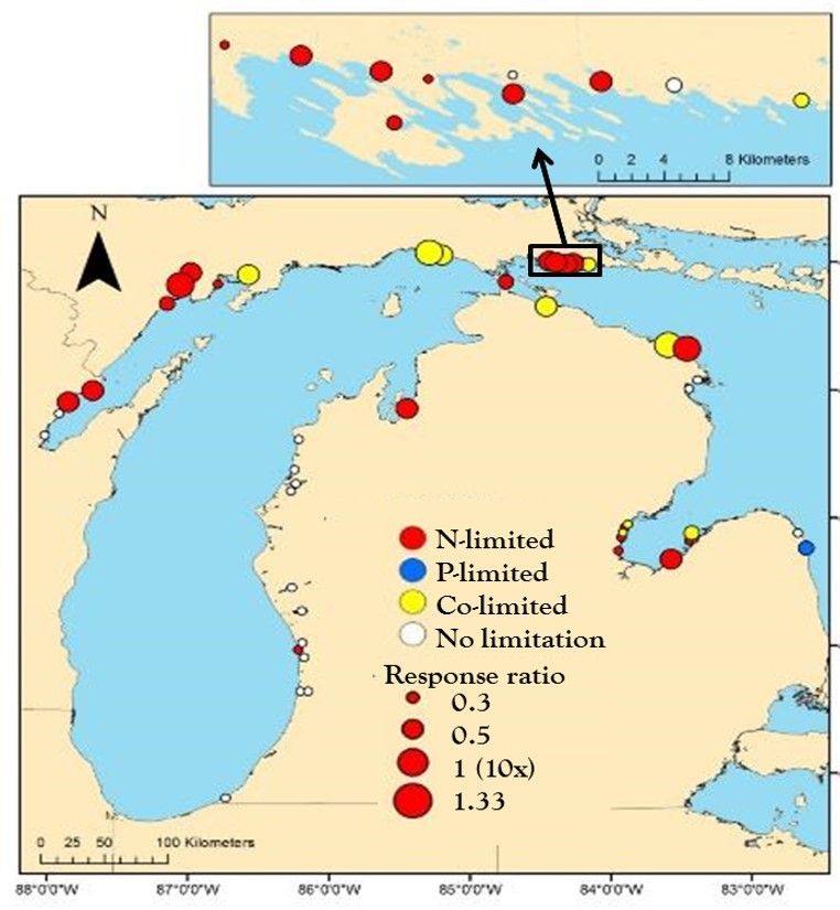 map great lakes coastal wetlands algae to nutrient additions