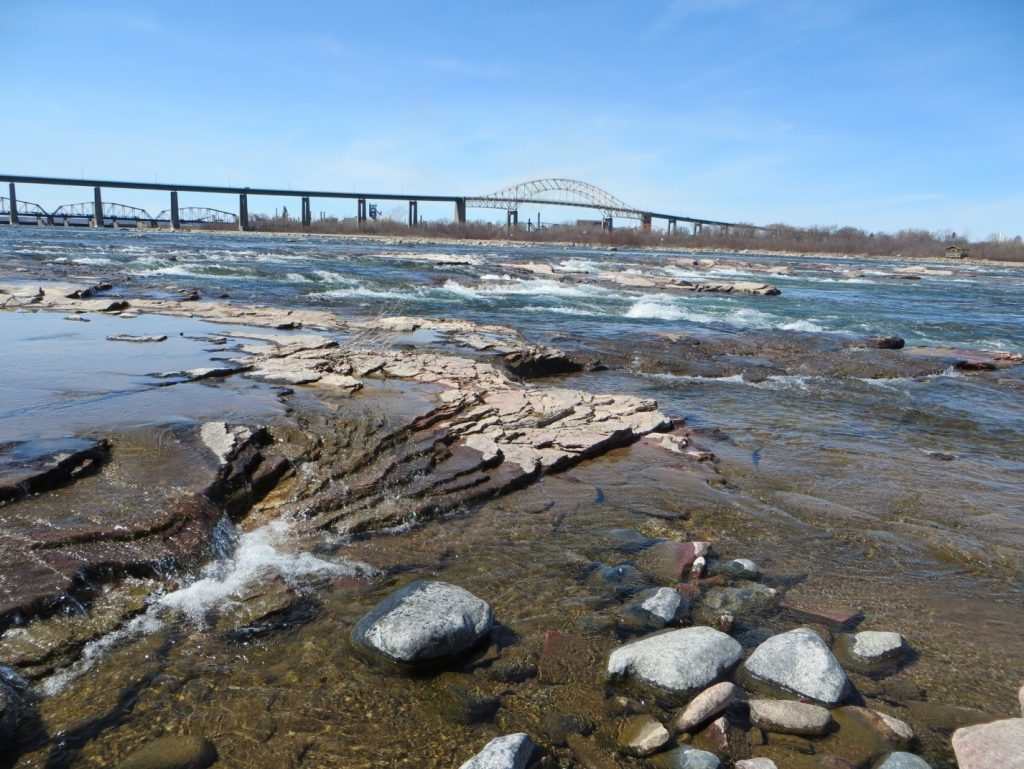 The St. Marys Rapids are a major spawning and feeding location for several species of fish. Credit: US Army Corps of Engineers