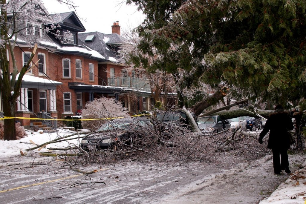 A tree knocked over during the December 2013 ice storm in Toronto knocked out power to parts of the Annex region of the city. More frequent ice storms are expected by the city due to climate change. Credit: Ron Bulovs