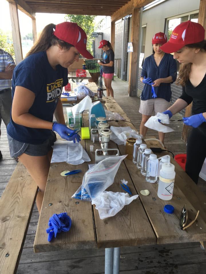 volunteer filters water sample lasalle