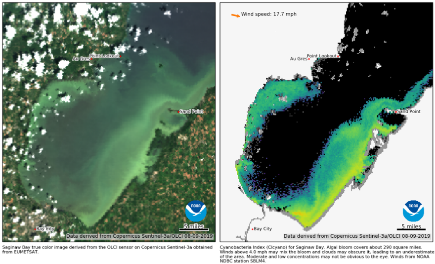 satellite saginaw bay