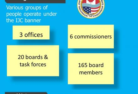 infographic about IJC website