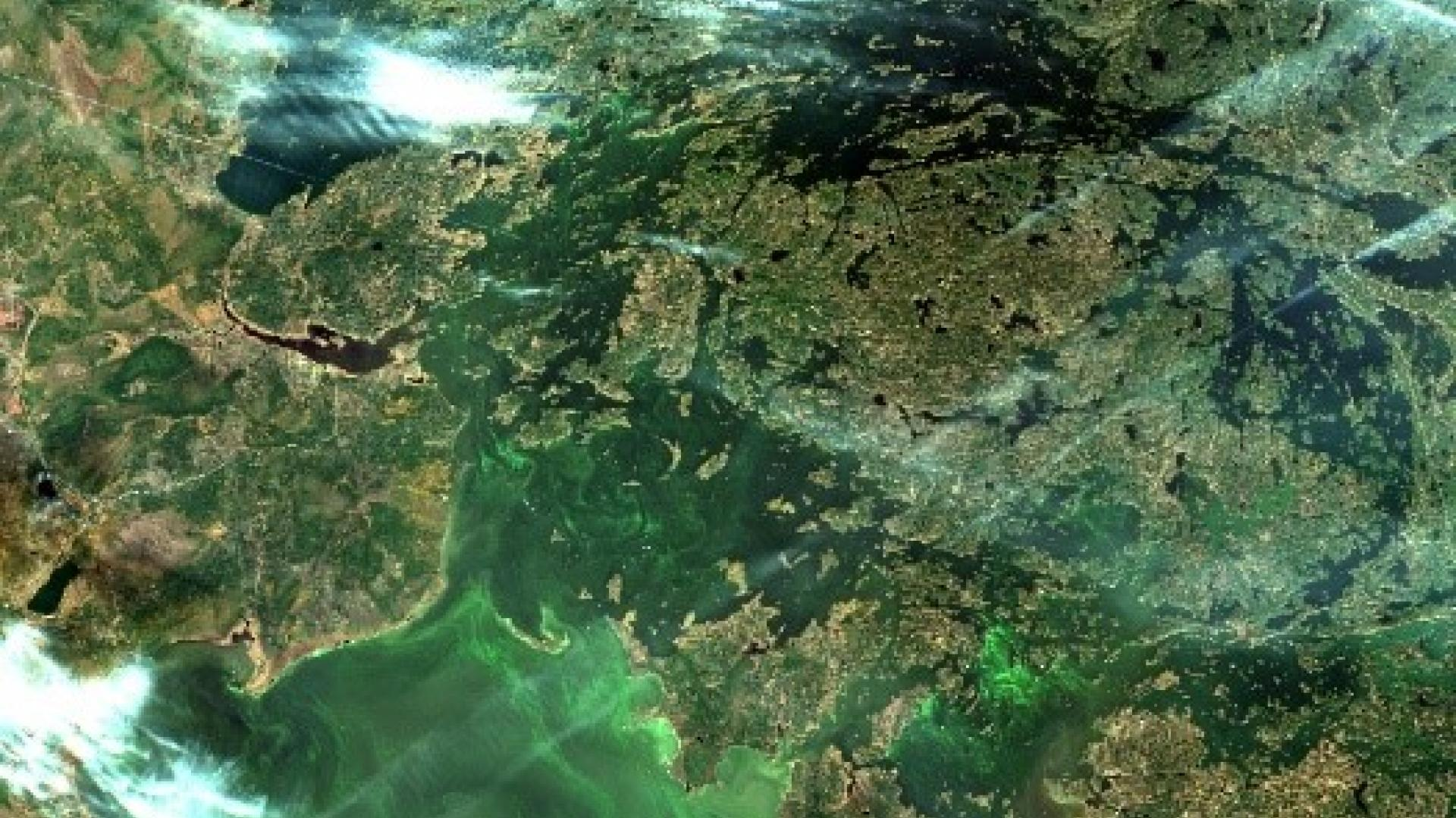 Water Matters - Satellite image of Algal Blooms in Lake of the Woods