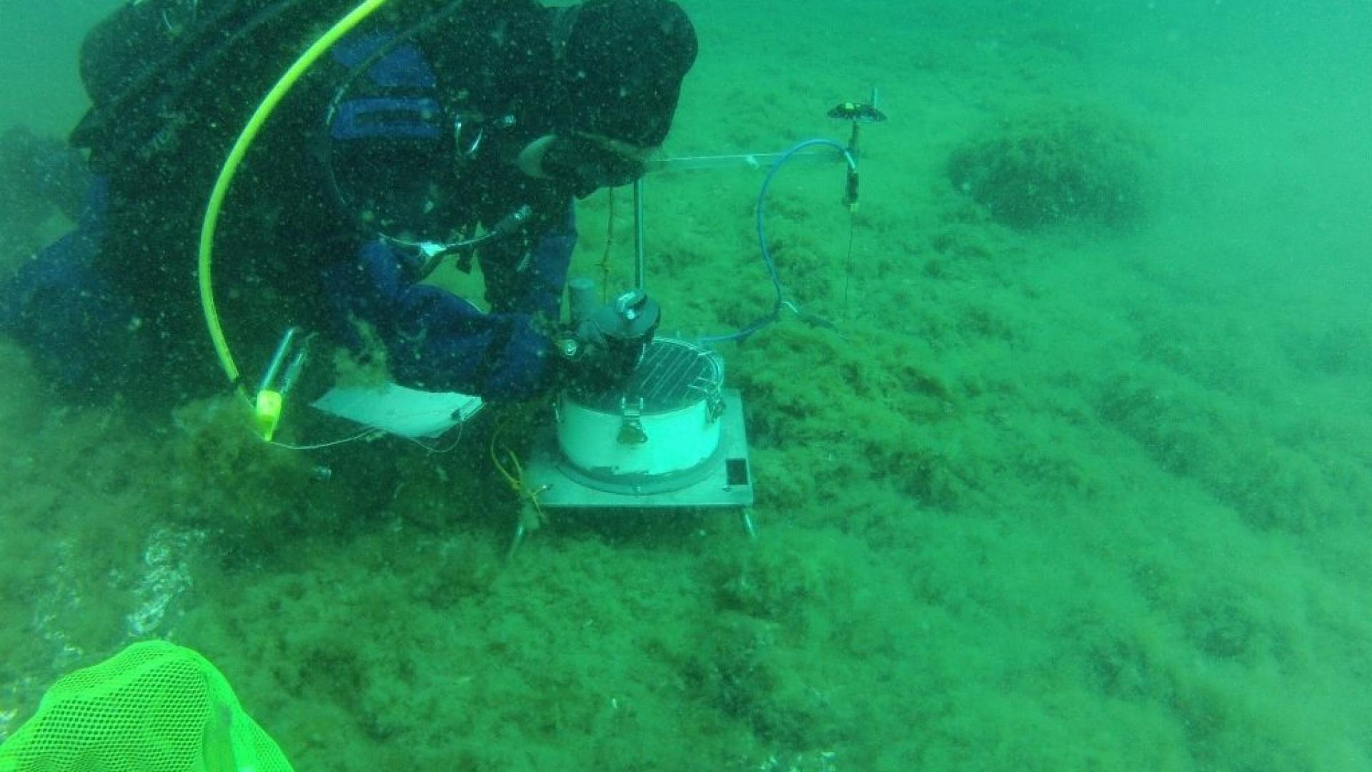 A graduate student studies benthic oxygen dynamics in Lake Michigan