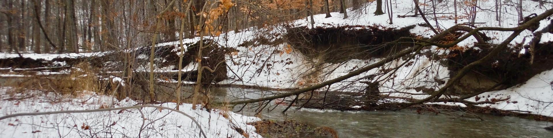 fletchers creek